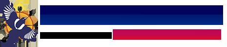 Seoul Solutions Logo